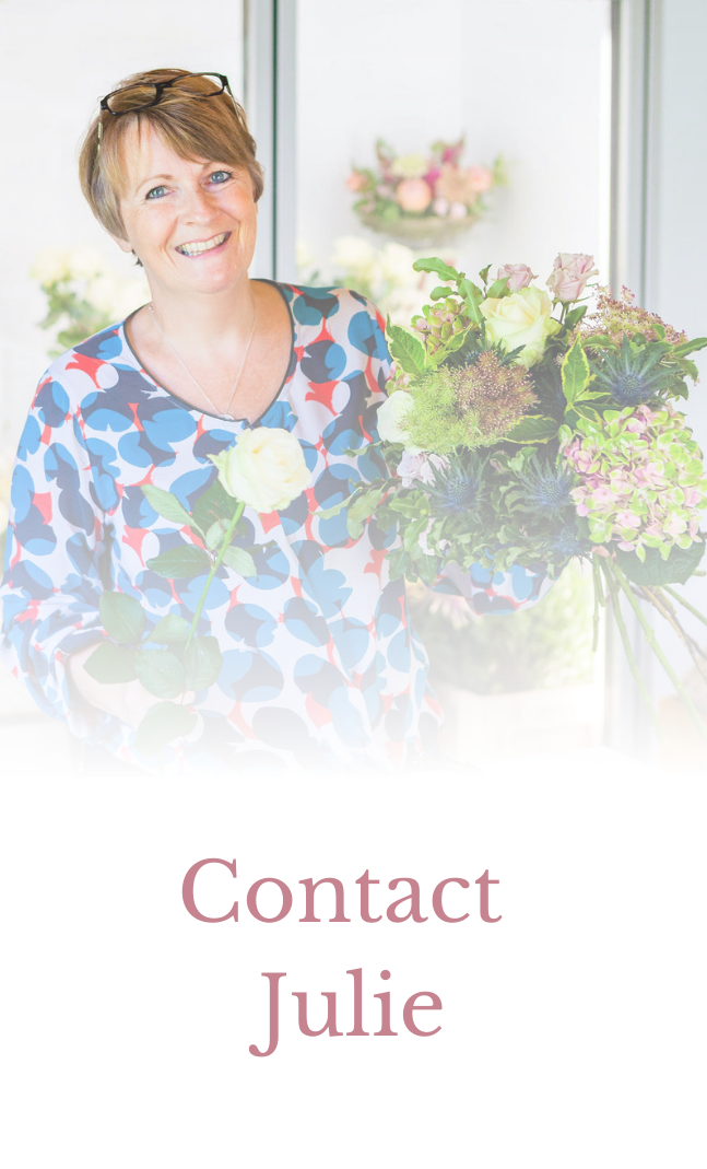 Contact Blooms by julie