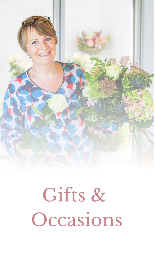 Flowers for Gifts & Occasions